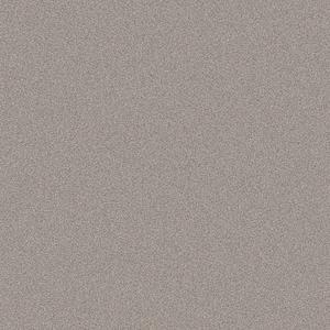 Decorative/Acrylic Panels Champagne Metallic CG22 Hi Gloss 3050x1220 MDF